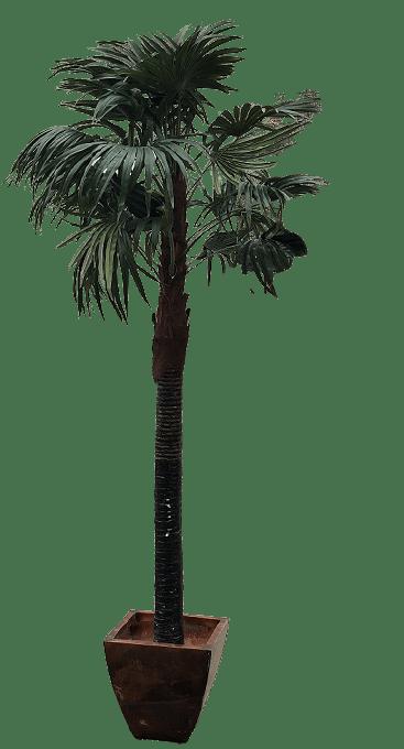 location de palmier artificiel